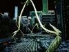 pascale-peyret-green-memory-06_1