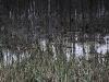 01_arturas-valiauga_ilgesio-zeme_2012-37