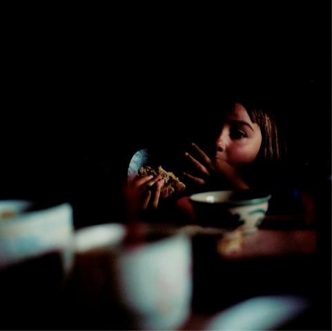 emilia-stefani-law_in-focus-2008