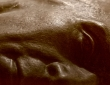 01_arturas-valiauga_ilgesio-zeme_2012-24