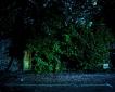 mindaugas-komskis_drwaing-down-the-moon-01